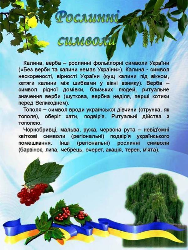 /Files/images/j318170_1288899836.jpg